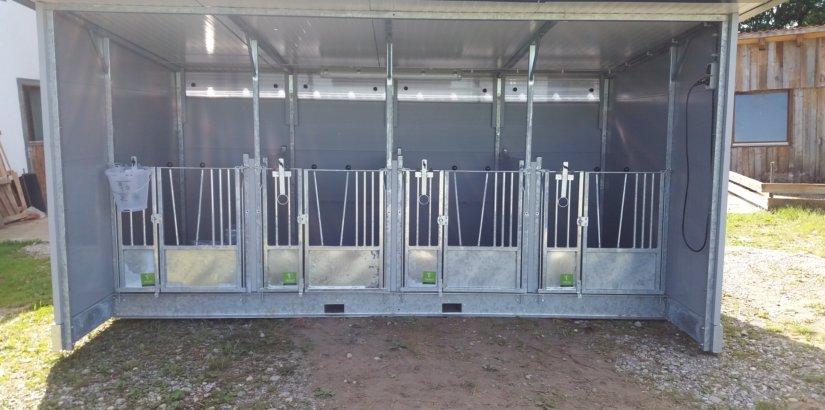 Quattro Kälberbox