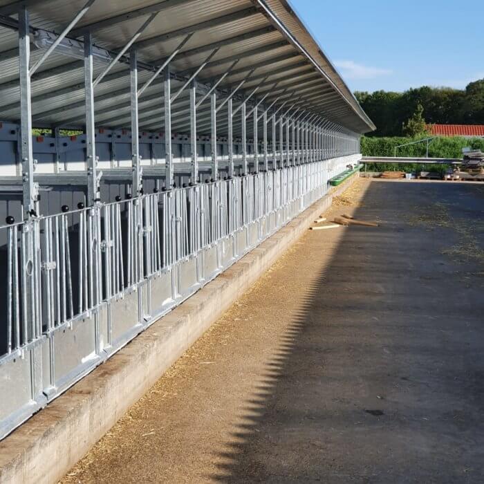Größe Renovierung: 100 Liegeflächen nach Topcalf-Boxen