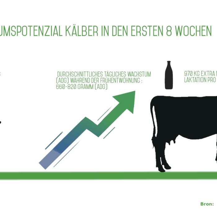 Wachstumspotential der Kälber in den ersten 8 Wochen !